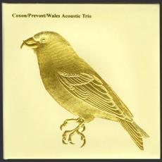 Обложка альбома Acoustic Trio, Музыкальный Портал α