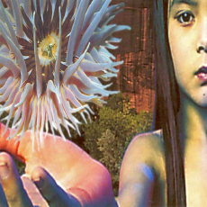 Обложка альбома Lifeforms, Музыкальный Портал α