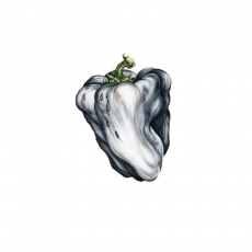 Обложка альбома White Pepper, Музыкальный Портал α