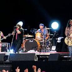 Red Hot Chili Peppers, Музыкальный Портал α