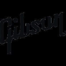 Gibson, Музыкальный Портал α