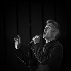 Curtis Stigers, Музыкальный Портал α