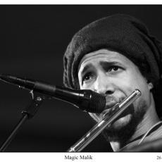 Malik Mezzadri, Музыкальный Портал α