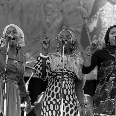 Rita Marley, Музыкальный Портал α