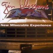 Обложка альбома New Miserable Experience, Музыкальный Портал α