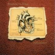 Обложка альбома Calculated, Музыкальный Портал α