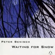Обложка альбома Waiting for Snow, Музыкальный Портал α