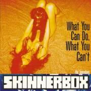 Обложка альбома What You Can Do, What You Can't, Музыкальный Портал α