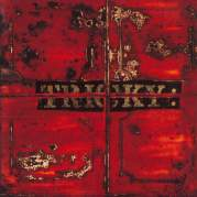 Обложка альбома Maxinquaye, Музыкальный Портал α