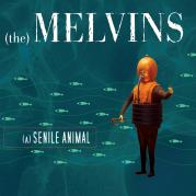 Обложка альбома (A) Senile Animal, Музыкальный Портал α