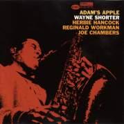 Обложка альбома Adam's Apple, Музыкальный Портал α