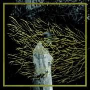 Обложка альбома AL ANDALUS Musique Arabo‐Andalouse, Музыкальный Портал α