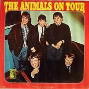 Animals on Tour, Музыкальный Портал α