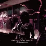 Обложка альбома Between Hemispheres, Музыкальный Портал α