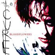 Bloodflowers, Музыкальный Портал α