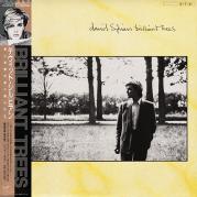 Обложка альбома Brilliant Trees, Музыкальный Портал α