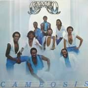 Cameosis, Музыкальный Портал α
