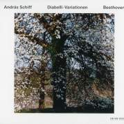 Diabelli-Variationen, Музыкальный Портал α
