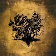 Обложка альбома Falsehoods, Музыкальный Портал α