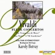 Обложка альбома Flute Concertos, Музыкальный Портал α