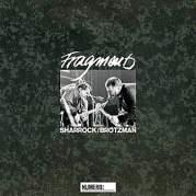 Обложка альбома Fragments, Музыкальный Портал α