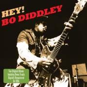 Обложка альбома 'Hey Bo Diddley', Музыкальный Портал α