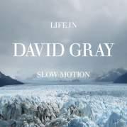 Обложка альбома Life in Slow Motion, Музыкальный Портал α