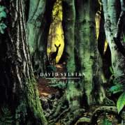 Обложка альбома Manafon, Музыкальный Портал α