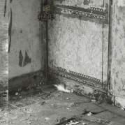Обложка альбома Medieval Scream, Музыкальный Портал α