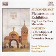 Обложка альбома Mussorgsky: Pictures at an Exhibition / Night on the Bare Mountain / Borodin: In the Steppes of Central Asia / Polovtsian Dances, Музыкальный Портал α