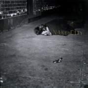 Naked City, Музыкальный Портал α