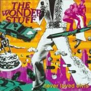 Обложка альбома Never Loved Elvis, Музыкальный Портал α