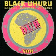 Обложка альбома Now Dub, Музыкальный Портал α