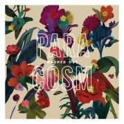 Обложка альбома Paracosm, Музыкальный Портал α