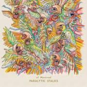Обложка альбома Paralytic Stalks, Музыкальный Портал α