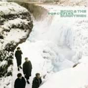 Обложка альбома Porcupine, Музыкальный Портал α