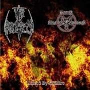 Обложка альбома Reborn, Музыкальный Портал α