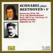 Обложка альбома Schnabel plays Beethoven V, Музыкальный Портал α