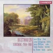 Serenade / Trio / Duo, Музыкальный Портал α