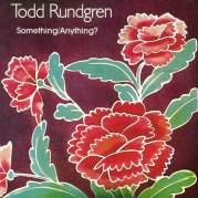 Обложка альбома Something/Anything?, Музыкальный Портал α