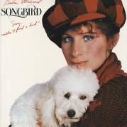 Songbird, Музыкальный Портал α