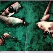Swoon, Музыкальный Портал α