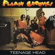 Teenage Head, Музыкальный Портал α