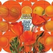 Обложка альбома That Lucky Old Sun, Музыкальный Портал α