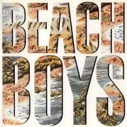 Обложка альбома The Beach Boys, Музыкальный Портал α