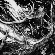 Обложка альбома The Dark, Музыкальный Портал α