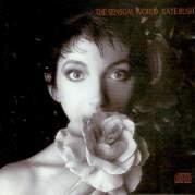 Обложка альбома The Sensual World, Музыкальный Портал α