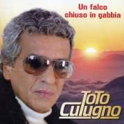 Обложка альбома Un falco chiuso in gabbia, Музыкальный Портал α