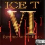 Обложка альбома VI: Return of the Real, Музыкальный Портал α