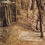 Обложка альбома Voices of Nature, Музыкальный Портал α